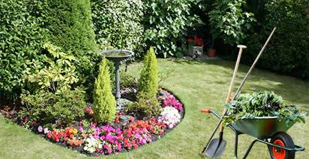 Superior house clearance garden tidy services