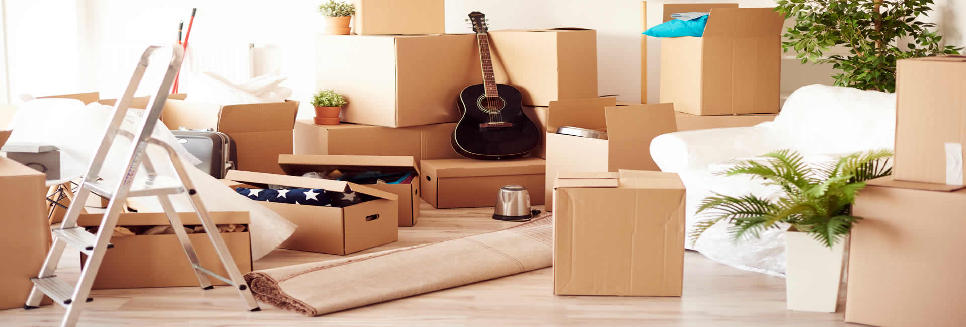 one man light removals and rubbish disposal services