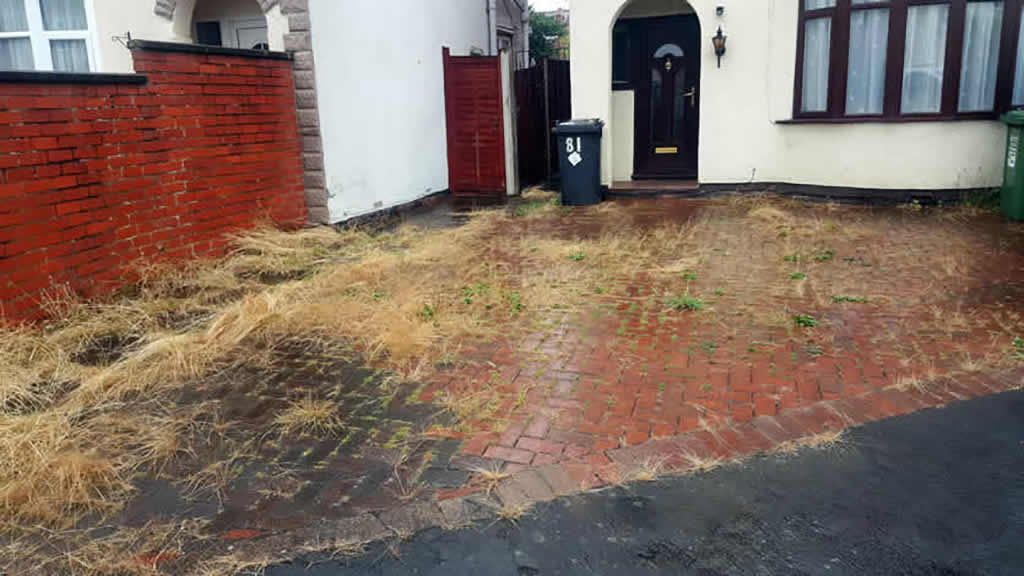 Patio & Driveway Cleaning Service before cleaning started